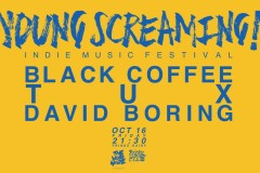 THE VOID NOIZE presents | YOUNG SCREAMING Vol. 3