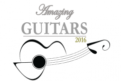 Amazing Guitars 2016 - Presented by Music In Music