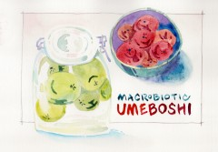 Mindcraft Workshop: <br>Macrobiotic Umeboshi (Pickled Japanese Plums), Ume Juice and Ume Sake